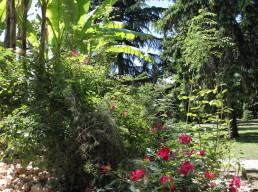 Foresteria