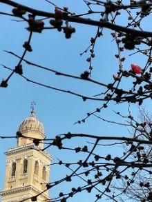 14/03/2020 Dedicazione della Basilica di Santa Giustina